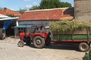 osiguranje-poljoprivrednog-gazdinstva