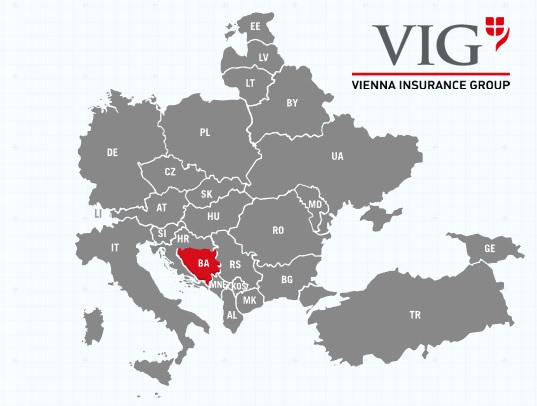 vig-insurance